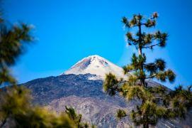 Tenerife : Parc du Teide