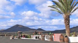 Lanzarote : La Geria
